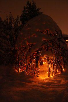 Fairy house garden woven structure #beneaththeferns #fairy #Faiiryhouse 8
