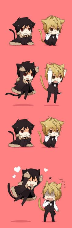 Neko Izaya x Neko Shizuo, Durarara!! This is too much... *collapses on floor* <3