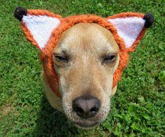 Chapeau de renard pour les chiens costume robe par WoollyWrenKnits