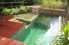 Natural Swimming Pools: 9 Myths Busted on houselogic.com... We will definitely have a natural swimming pool one day!
