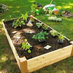 Grow a vegetable garden in raised beds. Design Tip: Keep It Narrow: Build your raised beds so you can easily reach the middle from both sides. Most raised beds are 4 feet across because the average person can easily reach about 2 feet. #vegetablegardening #growingvegetablesinraisedbeds #raisedgardenbeds
