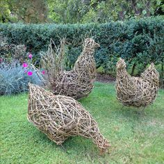 Willow chicken family by Gary Brown Willow. Willow chicken family by Gary Brown Willow. Outdoor Crafts, Outdoor Art, Outdoor Gardens, Outdoor Decor, Garden Crafts, Garden Projects, Outdoor Sculpture, Garden Sculpture, Willow Garden