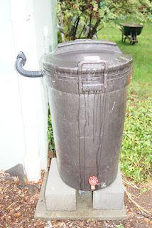 Rainwater barrels - very good things.