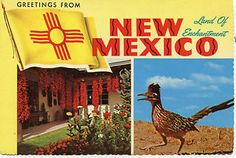 new mexico postcards - Yahoo Image Search Results