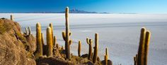 #Tour #Perù e #Bolivia 2016 | Arché Travel