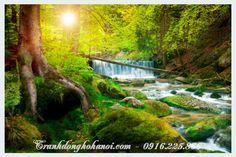 Tranh cảnh đẹp thác nước trong rừng treo nhà hàng
