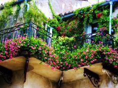 joli balcon avec fleurs comment fleurir son balcon