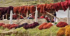 coloring wool dyeing peru - Google Search