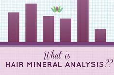 nutritional balancing and hair mineral analysis pdf