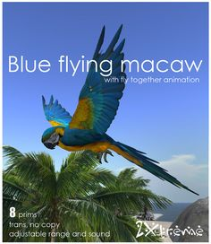 flying blue macaw by :: 2Xtreme ::