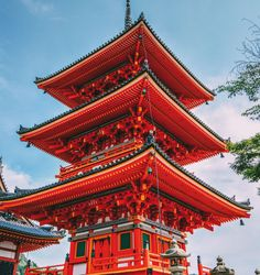 There is a reason that Kyoto is one of Japan's top cities for us travellers to visit. There's so much to do in this amazing city and the surrounding area that it can seem overwhelming,