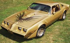 Pontiac / Firebird / Trans Am / 1979