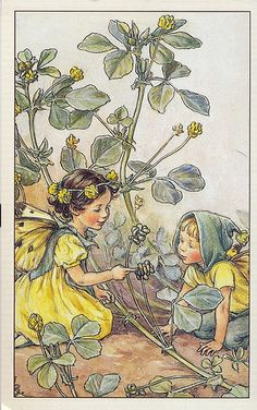 Cicely Mary Barker - The Black Medic Fairy | by Peregrina Tyss
