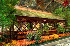 Bellagio Botanical Gardens - Las Vegas Fall 2013