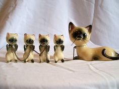 Vintage Siamese cat with four kittens