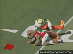 The duck who snapped. (on Shasta the UH mascot. sigh) | 16 Mascots Who Really Don't Give A$#!%
