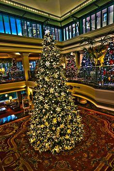 'Tis the season! The annual Empress Hotel, Christmas Tree Display Victoria, BC