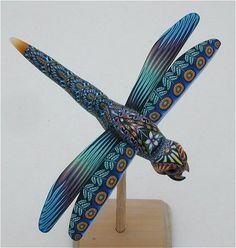 Dragonfly medium D by Jon Anderson