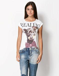 Bershka Italy - BSK dog photographic print T-shirt