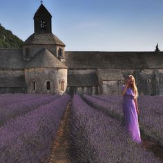 the color purple ... by s@brina, via Flickr