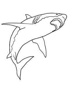 realistic shark coloring pages - photo#12