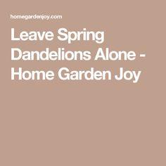 Leave Spring Dandelions Alone - Home Garden Joy