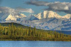 let's get back there soon // Denali National Park, Alaska