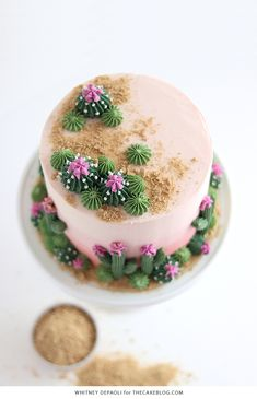 Cactus Cake - how to make a cute cactus themed cake with ombrè buttercream, edible sand and piped buttercream cacti. Frosting Recipes, Cake Recipes, Decoration Cactus, Edible Sand, Cactus Cake, Cactus Cupcakes, Caking It Up, Cake Blog, Savoury Cake