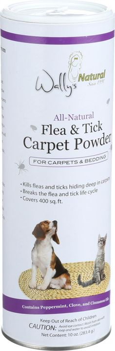 1000 Images About Pets On Pinterest Fleas Dog Beds And