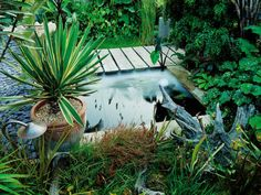 A dark garden spot is brightened with a small reflecting pond. Bold foliage plants complete the garden boundaries.