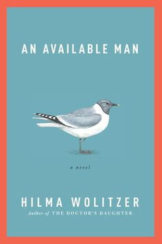 An Available Man by Hilma Wolitzer (June 2012)