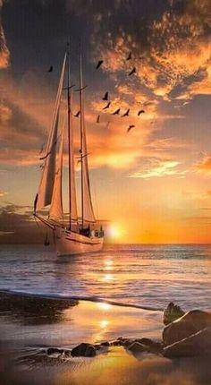 Wallpaper of Boat and yacht sailing at ocean sea - Schiff Seascape Paintings, Landscape Paintings, Nature Pictures, Beautiful Pictures, Boat Wallpaper, Best Yachts, Old Sailing Ships, Sailing Boat, Boat Art