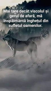 LUCEAFĂRUL DIN VALE: Kessy Ellys Nycollas - România - Înghețul Spiritual Quotes, Wisdom Quotes, Qoutes, Motivational Quotes, Inspirational Quotes, Book Images, True Words, Wallpaper Quotes, Motto