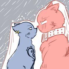 Kidlaw Kittycat full story