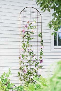 Our Jardin Flower Trellis is a metal trellis with a classic arch but an overall understated design ideal for clematis and other climbing plants. Clematis Trellis, Flower Trellis, Garden Trellis, Plant Trellis, Clematis Flower, Garden Bed, Metal Trellis, Wall Trellis, Trellis On Fence