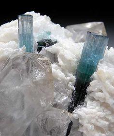 blue Elbaite crystals set in Albite and Quartz crystals
