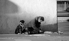 Community Post: The Dogs Of Homeless People