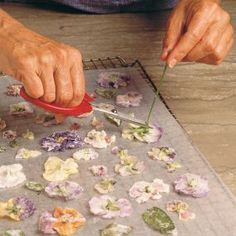 How to make candied flowers and more great info on edible flowers.