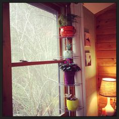 Tension rod shower caddy as window plant stand. This would be perfect in my kitchen! Want <3