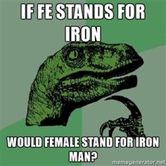 Philosoraptor - If FE stands for iron Would Female stand for Iron Man?
