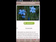 ▶ ecobalade France Info le 15 mai 2014 - YouTube