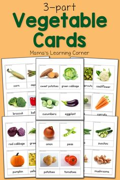 Download a set of vegetable 3-part cards for your young learners! Includes…