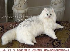 Needle felted cat  - STUNNING!!   By the famous  Kirino Mirii from Japan.  Her talent is amazing.