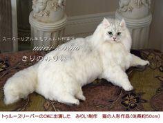 http://blogs.yahoo.co.jp/kijipaint/67717321.html へ needed felted cat
