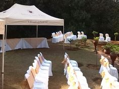 Seating for the ceremony