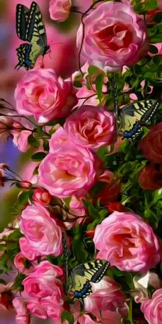 калейдоскоп Beautiful Rose Flowers, Beautiful Gif, Love Rose, Beautiful Butterflies, Amazing Flowers, Pink Flowers, Flower Phone Wallpaper, Butterfly Wallpaper, Rita Hayward