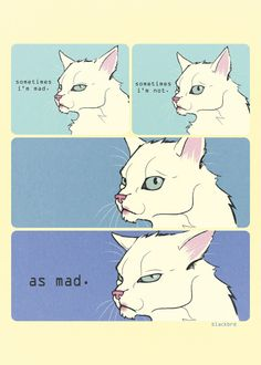 """beakfreaks: """"(Not Bird) but here is a cat version of the Mad Bird comic. """""""
