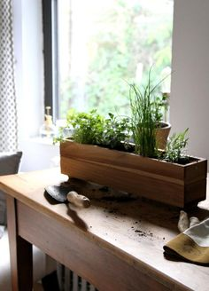 DIY: Shade-Tolerant Herbs To Grow in Your Apartment by Erin Boylean herbal window box for a low-light apartment, gardenista Urban Garden Design, Herb Garden Design, Diy Garden, Garden Boxes, Garden Ideas, Patio Ideas, Garden Inspiration, Backyard Garden Landscape, Small Backyard Gardens