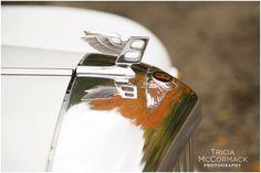 Bentley - Berkshire County Fall Wedding - Tricia McCormack Photography