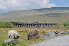 ITV Calendar:     Ribblehead Viaduct by Catherine Liversedge